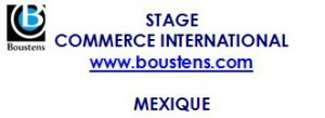 stage au mexique commerce international