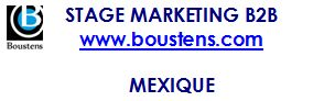 stage web marketing B2B