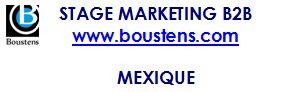 stage web marketing B2B