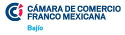 logo ccibajio
